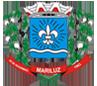 Logo da Camara de MARILUZ
